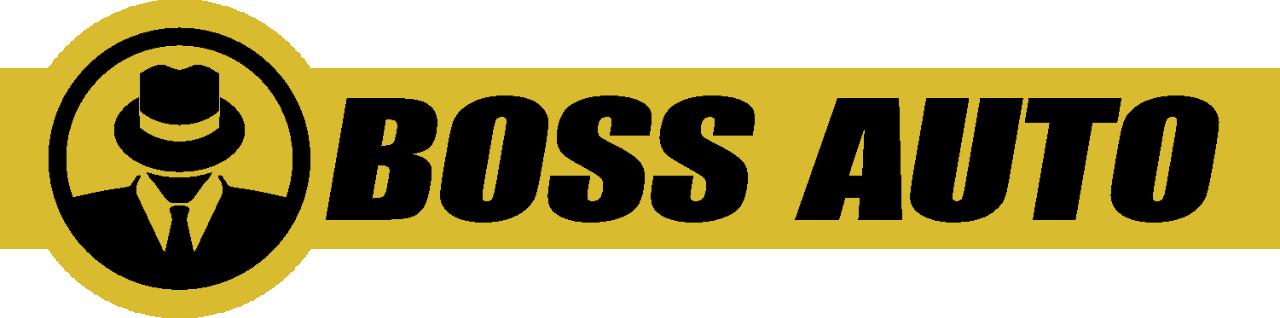 BOSS AUTO LLC