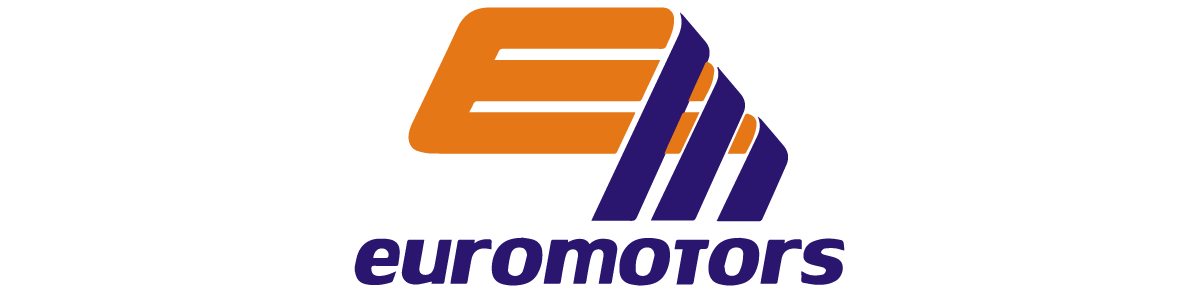 EURO MOTORS AUTO DEALER INC
