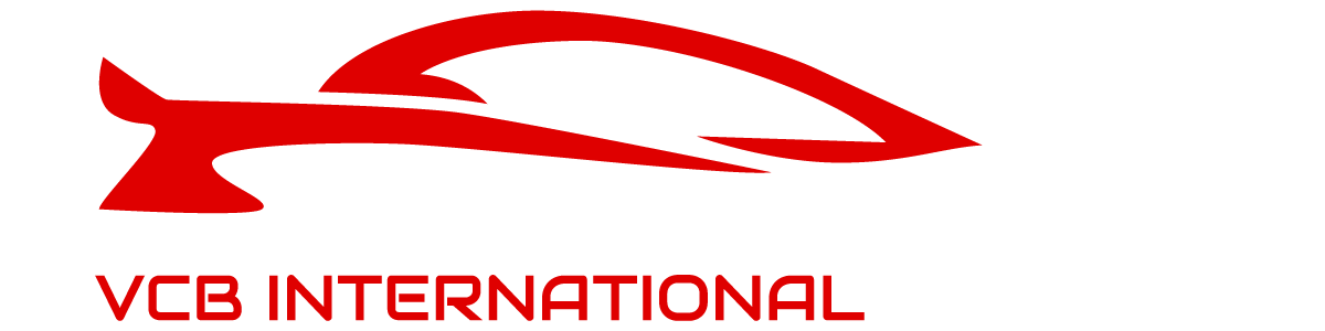 VCB INTERNATIONAL BUSINESS