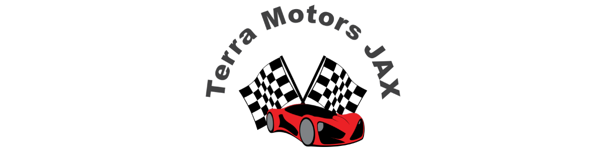 Terra Motors LLC