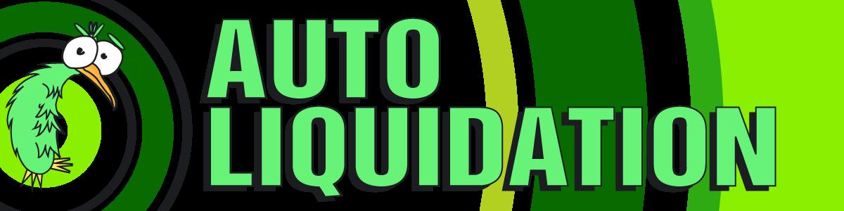 Auto Liquidation