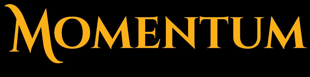 Momentum Motor Group
