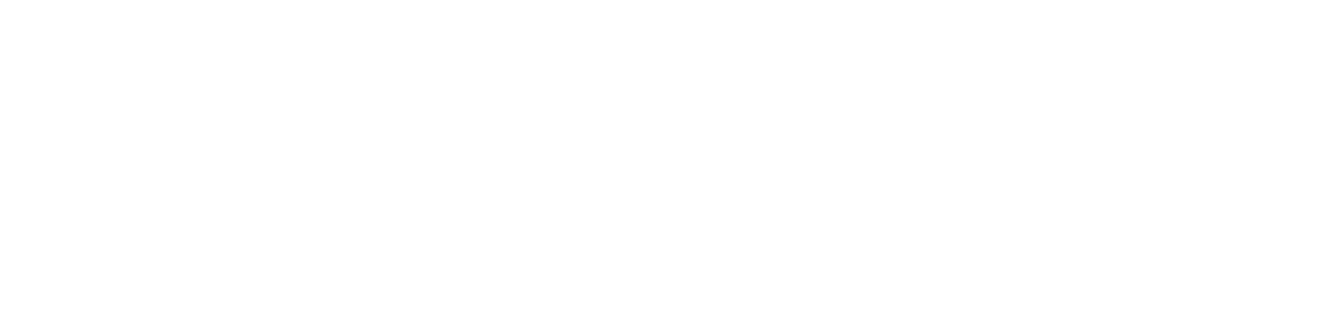 Ryan Motors LLC