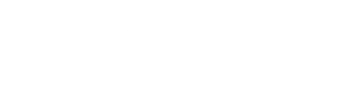 Worldwide Auto Group