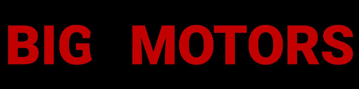 BIG O MOTORS LLC