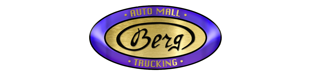 BERG AUTO MALL & TRUCKING INC