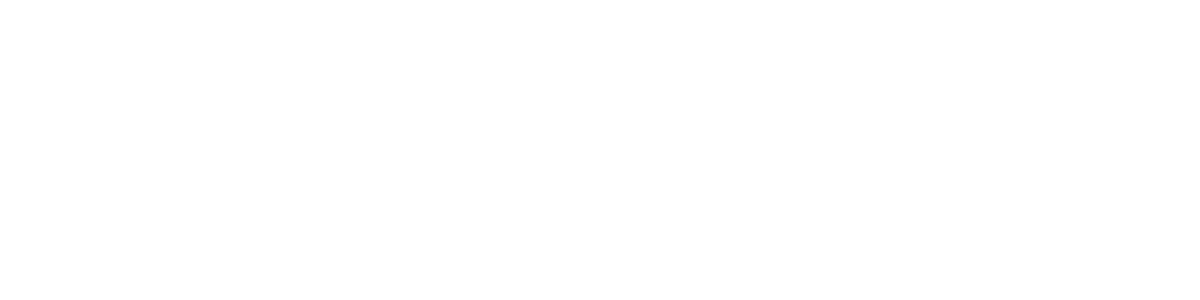 FLORIDA MIDO MOTORS INC