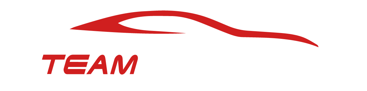 TEAM MOTORS LLC