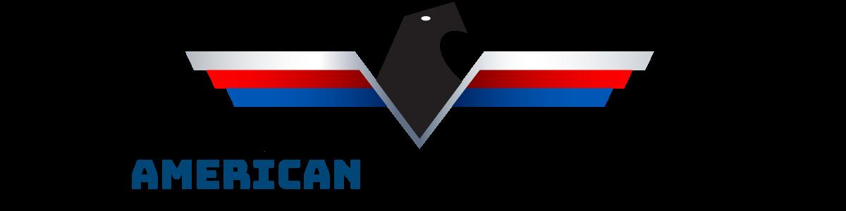 American Auto Group LLC