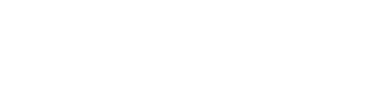 BORGMAN OF HOLLAND LLC