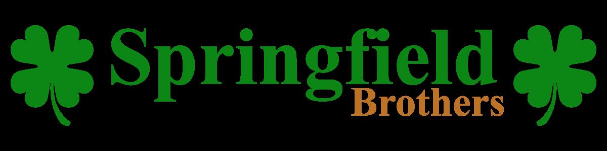 SPRINGFIELD BROTHERS LLC