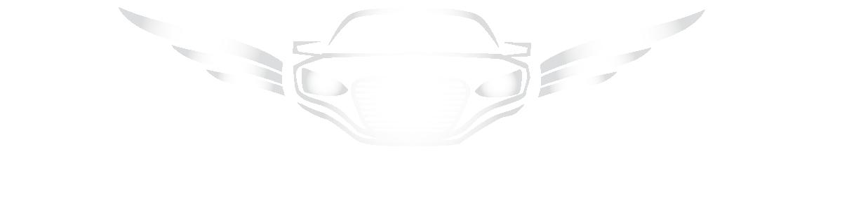 F & Z MOTORS LLC