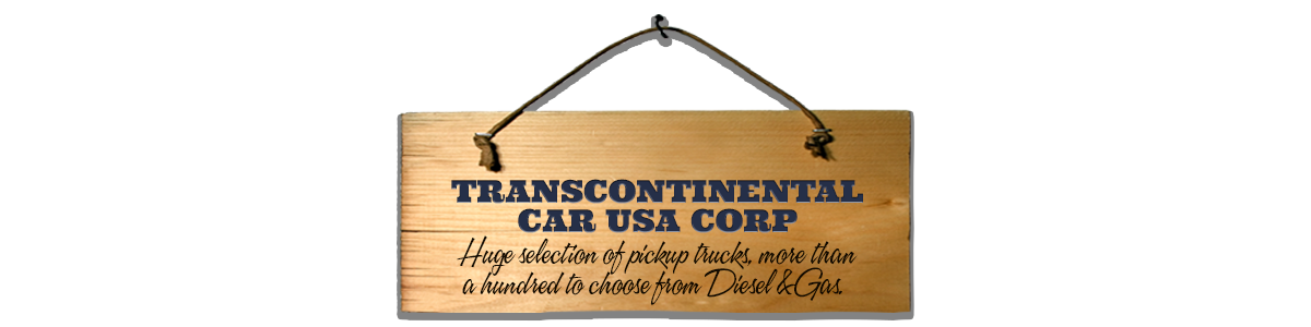 TRANSCONTINENTAL CAR USA CORP
