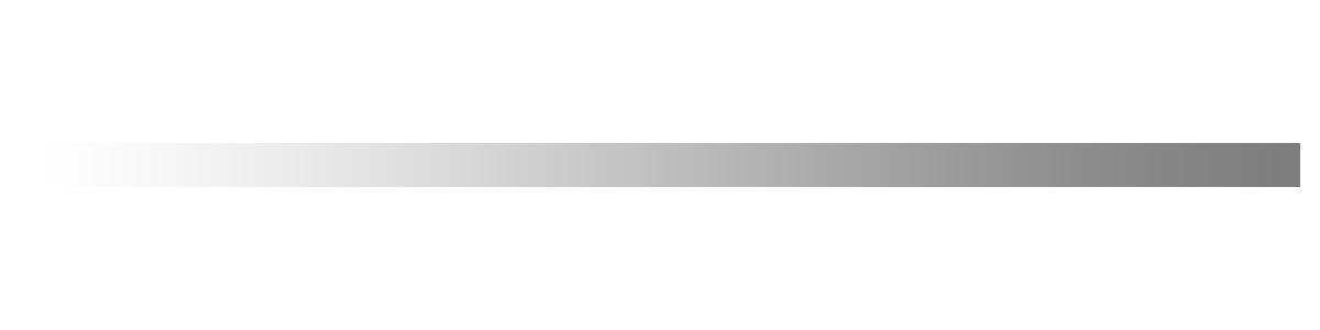 Bayer Motor Co