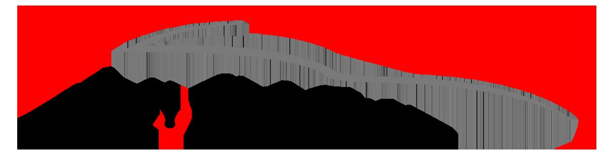 Auto Link Inc