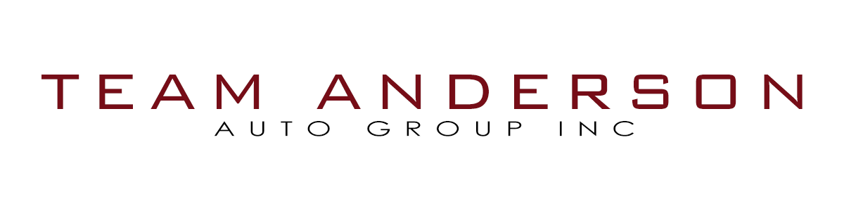 TEAM ANDERSON AUTO GROUP INC