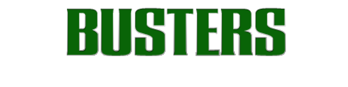 Busters Auto Brokers
