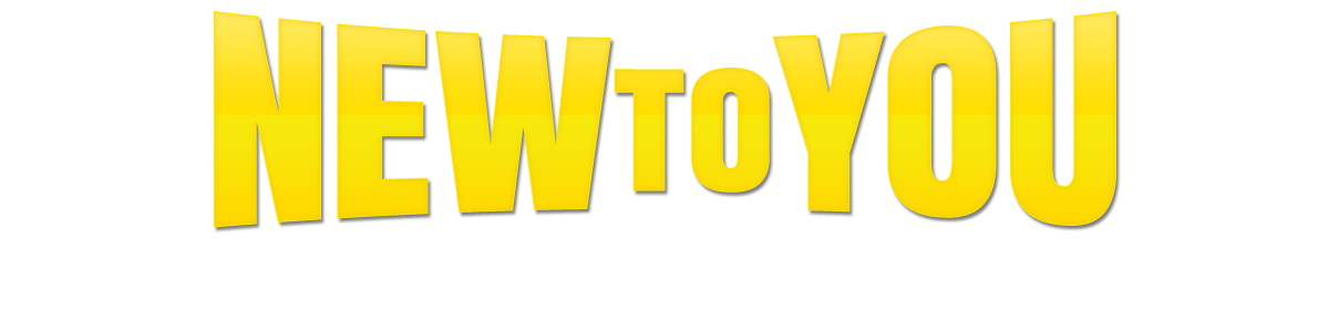 NEW 2 YOU AUTO SALES LLC