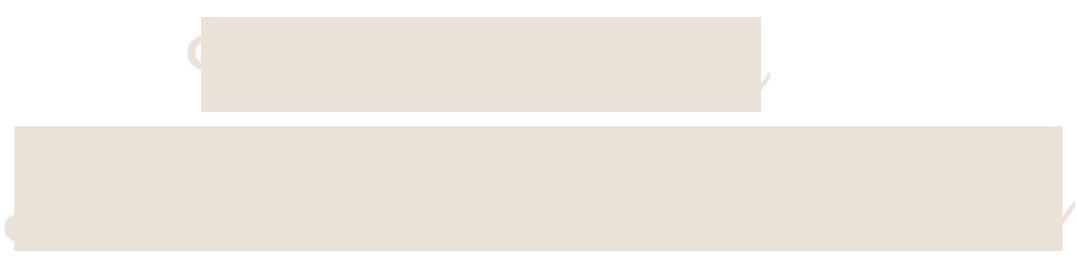 Lake Park Auto Connection
